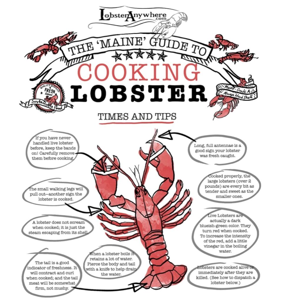 lobster cooking tips